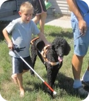 photo of 7 yr old sawyer with dog Candy in harness