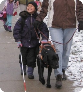 photo of 6 yr old Kaitlyn holding Slick's harness and using her cane