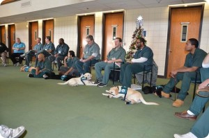 inmates with pups
